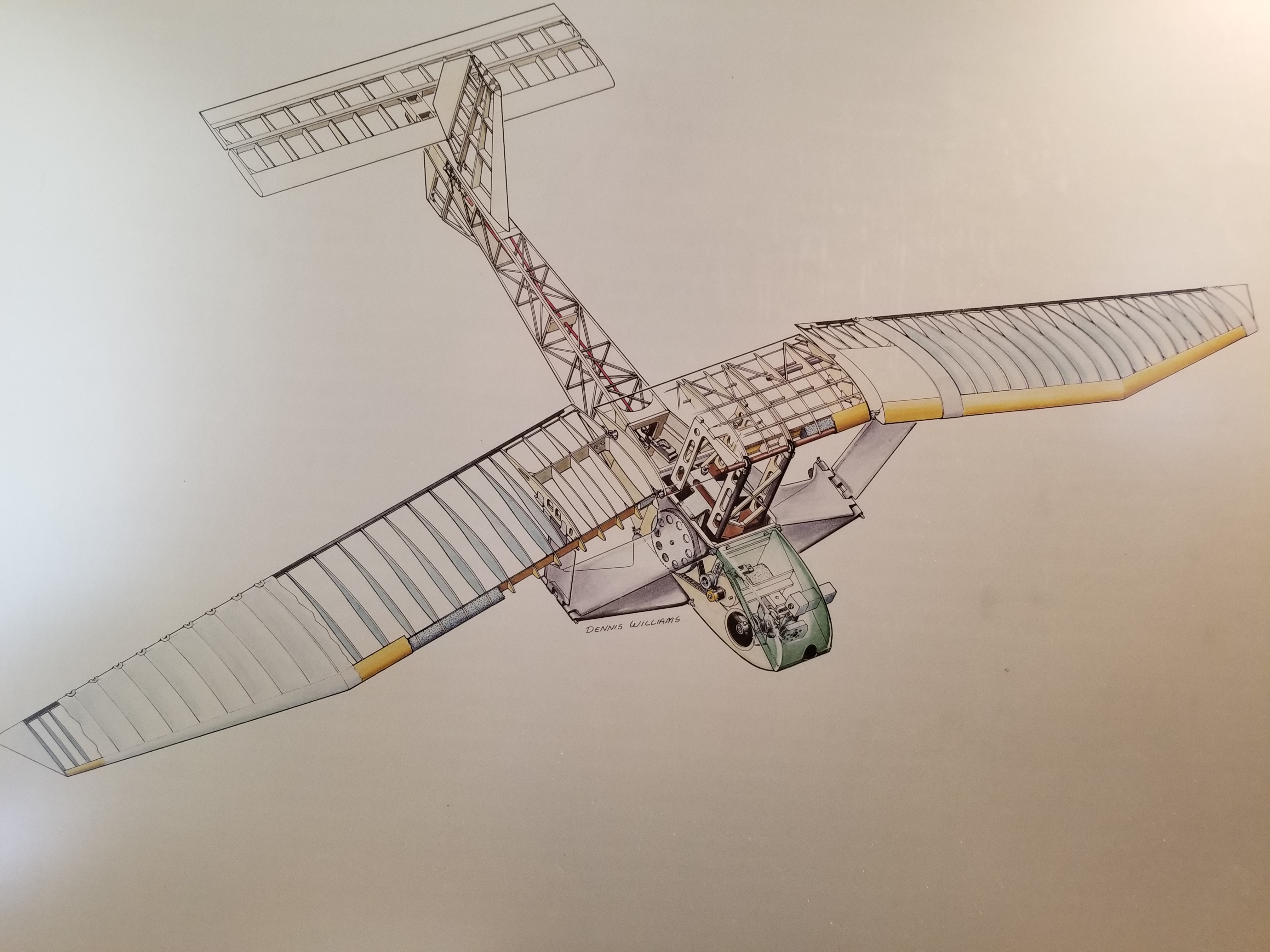 Ornithopter First Flight